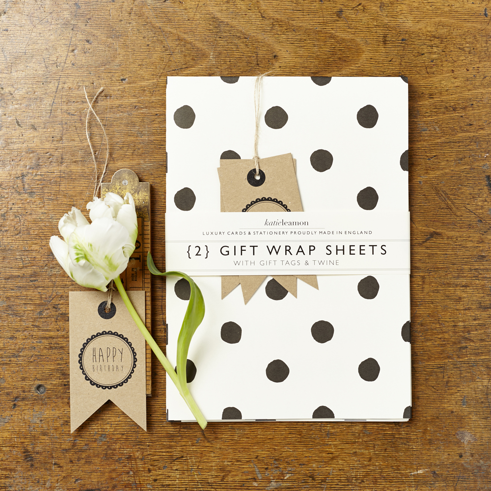 Painted Polka Dot Gift Wrap Pack