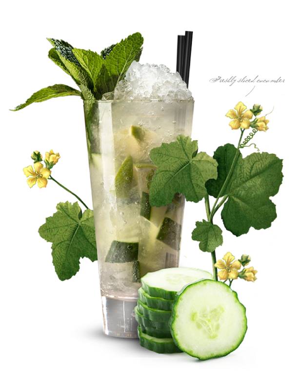 recipes_blighty-mojito