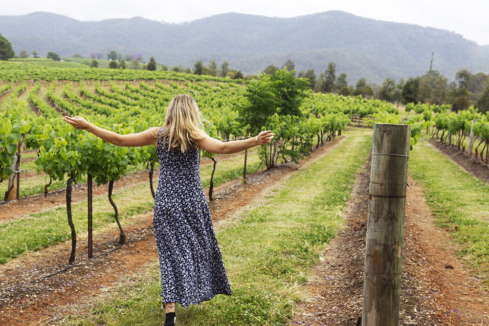the hunter valley wine region