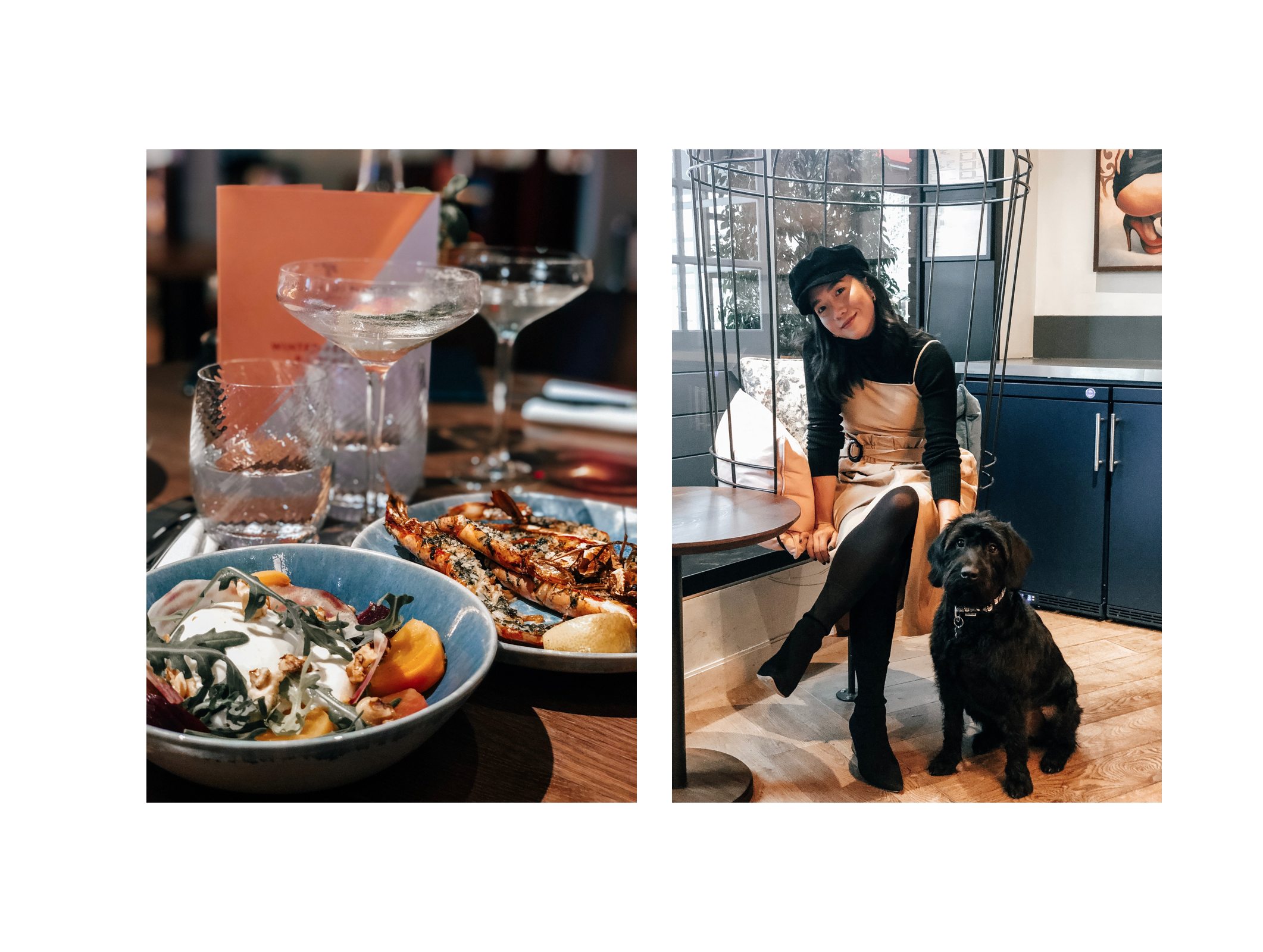#TeamCocopup: A Dog friendly review of Bluebird Cafe White ...