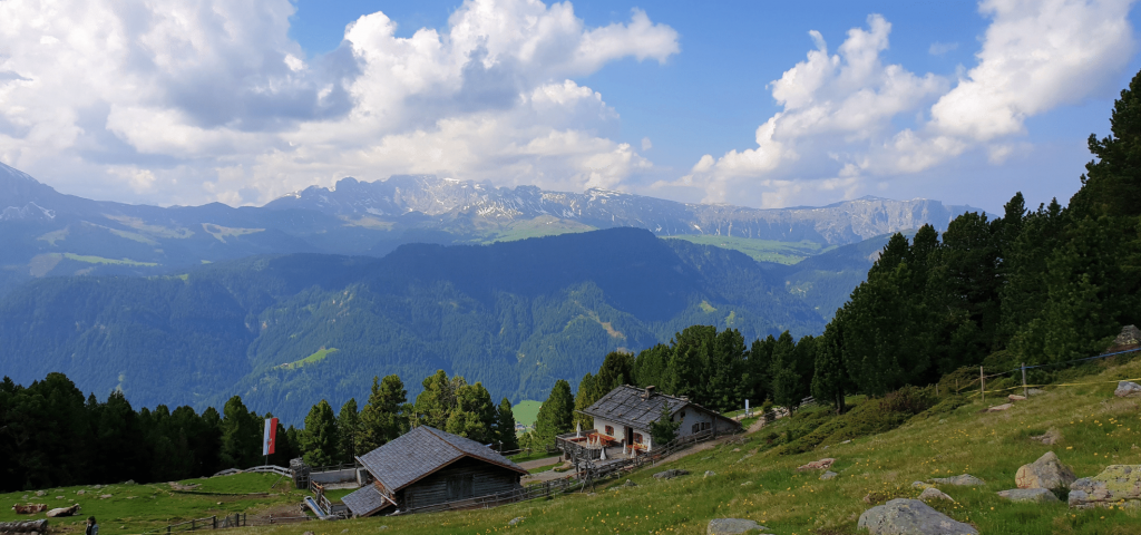 Panoramic view of Resciesa forest in the Dolomites