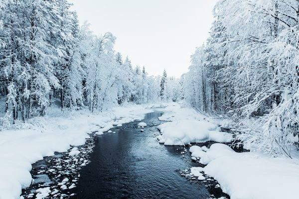 creek in snowscape