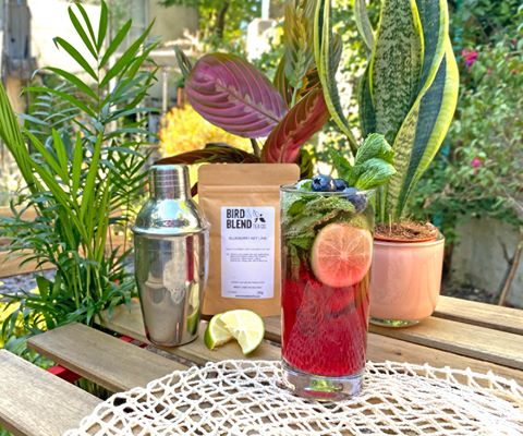 summer-cocktails-days-nights-blueberry-key-lime-mojito-iced-tea-bird-blend